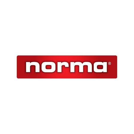 ŁUSKI NORMA kal. 7,5x55 Swiss